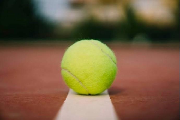 今話題のテニスボールダイエット