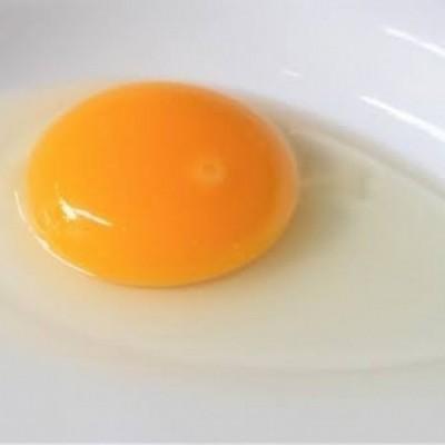 【完全栄養食!卵でダイエットを効率よく?!】
